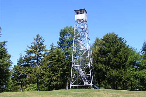 The fire tower at Allis State Park