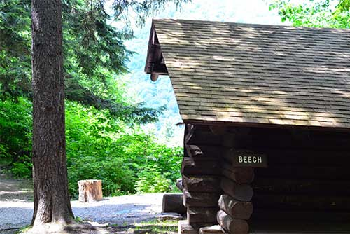 Beech lean-to at Coolidge State Park (photo credit: Paul Detzer)