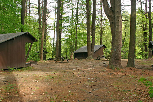 Lean-to sites at Lake Shaftsbury State Park
