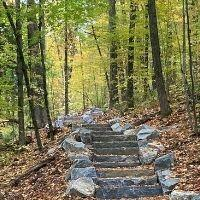 A new trail at Mt Philo