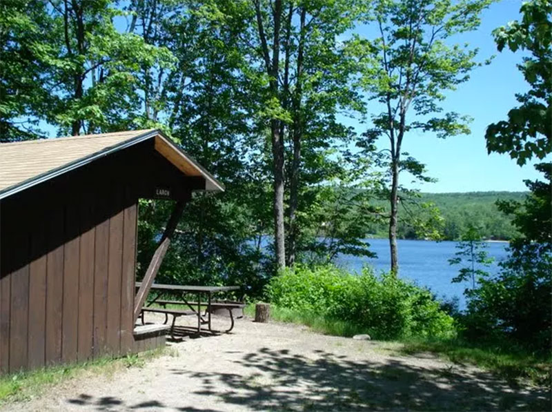 The Larch lean-to site at Stillwater State Park