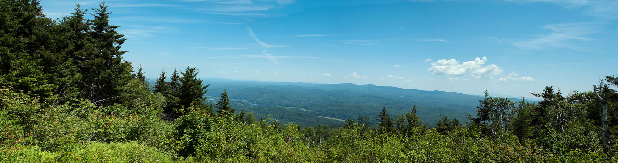 Mt. Ascutney State Park 4